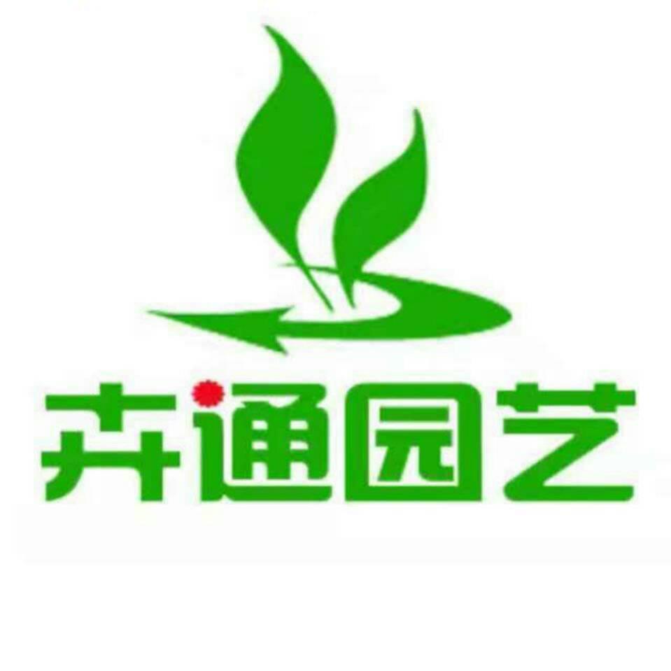 绿地球80#45盆/件 新欣